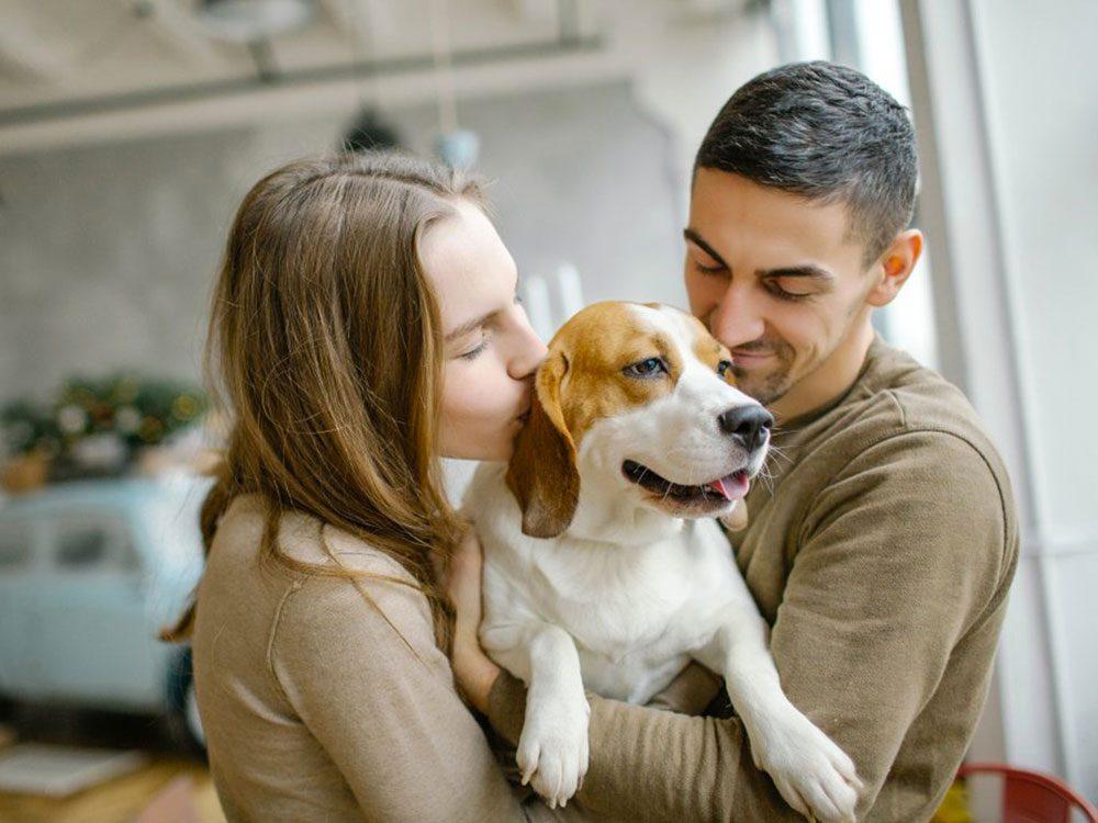 Votre chien sait si vous avez euune dispute avec tonpartenaire.