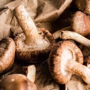 Risotto d'orge aux champignons
