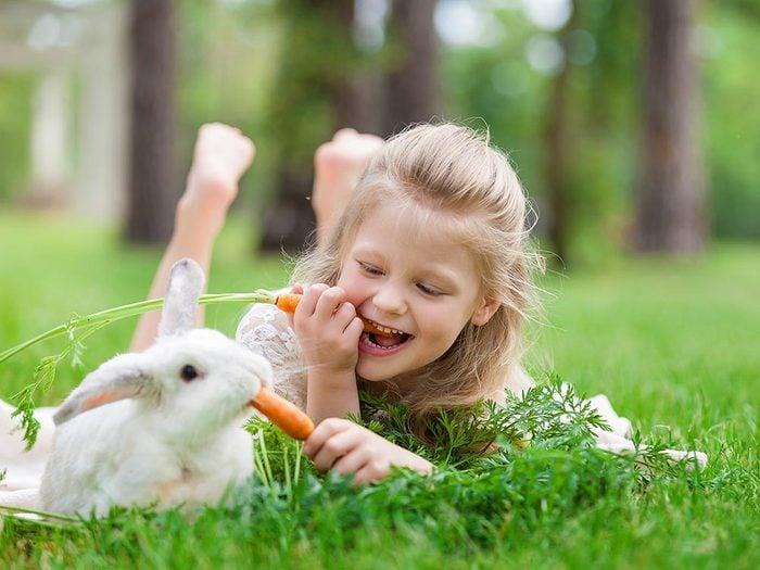 Comment s'occuper d'un lapin: bien choisir sa nourriture.