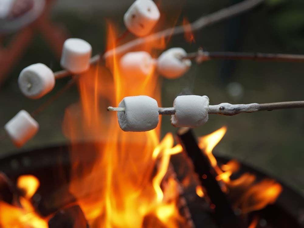 Revivre l'été de votre enfance en faisant brûler une guimauve.