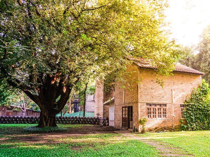 Conservez la fraicheur de votre maison grâce aux ombres des arbres.