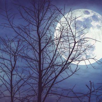 Les mystères de la lune qui intriguent les scientifiques