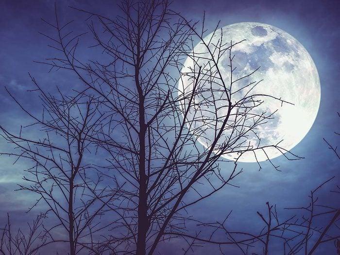 Les mystères de la lune qui intriguent les scientifiques: d'où vient la lune?