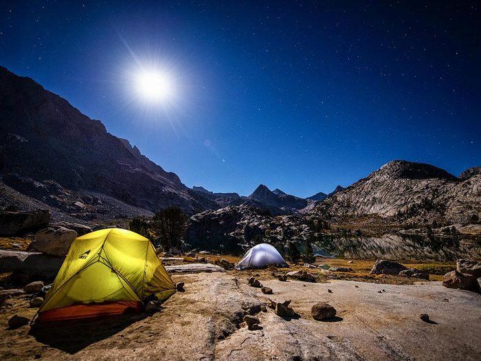 Les mystères de la lune: les loups et la pleine lune.