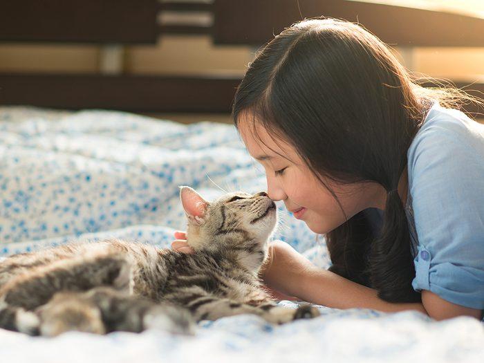 Les 20 meilleures races de chat pour votre famille.
