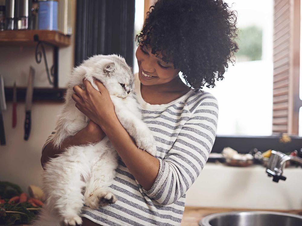 Pour se détendre avec le souper, jouez avec le chat.