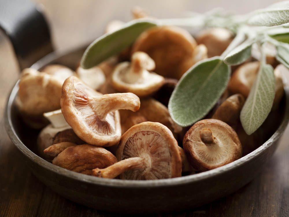 Prévenir le cancer par la consommation de champignons.