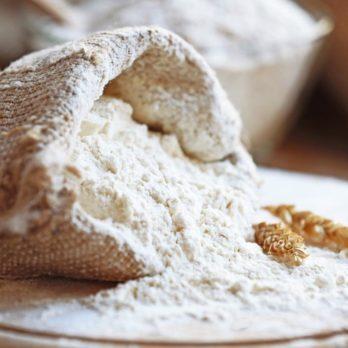 La farine crue est un vecteur du colibacille