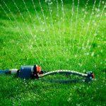 Entretien de la pelouse: 13 choses à éviter