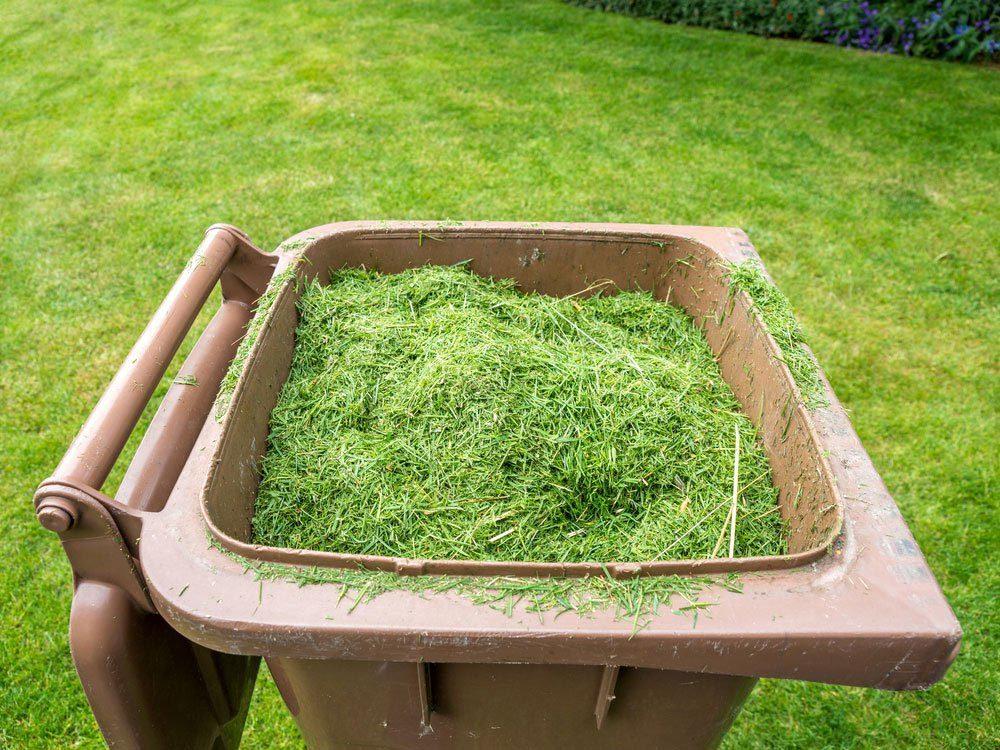 Conseil d'entretien de la pelouse: laissez le gazon coupé sur le terrain.