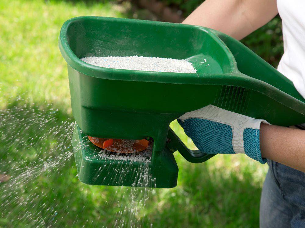 Pour l'entretien de la pelouse: n'abusez pas du fertilisant.