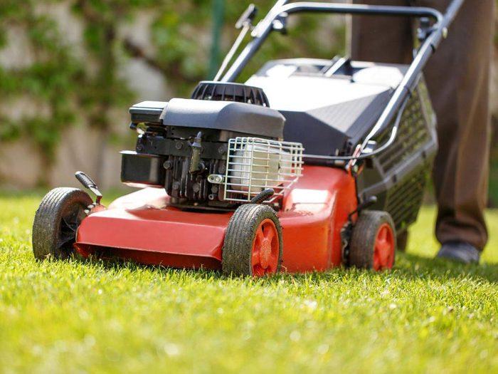 Entretien de la pelouse: changez de direction en coupant le gazon.