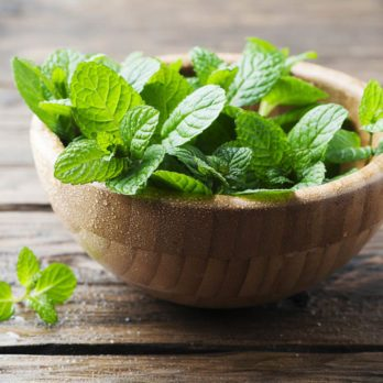 8 façons d'utiliser la menthe fraîche
