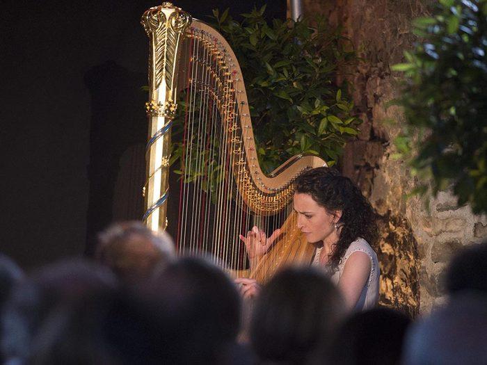 Métiers royaux: L'harpiste officielle du Prince de Galles.