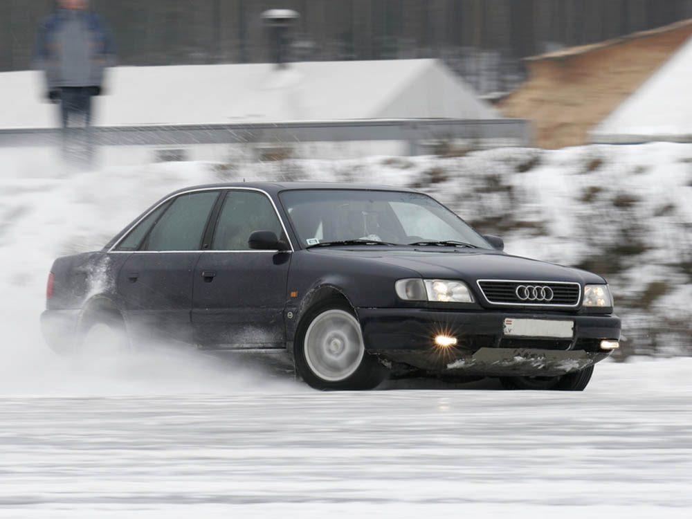 Mythe sur l'automobile: accélérer devant un orignal pour le faire passer au-dessus de la voiture.
