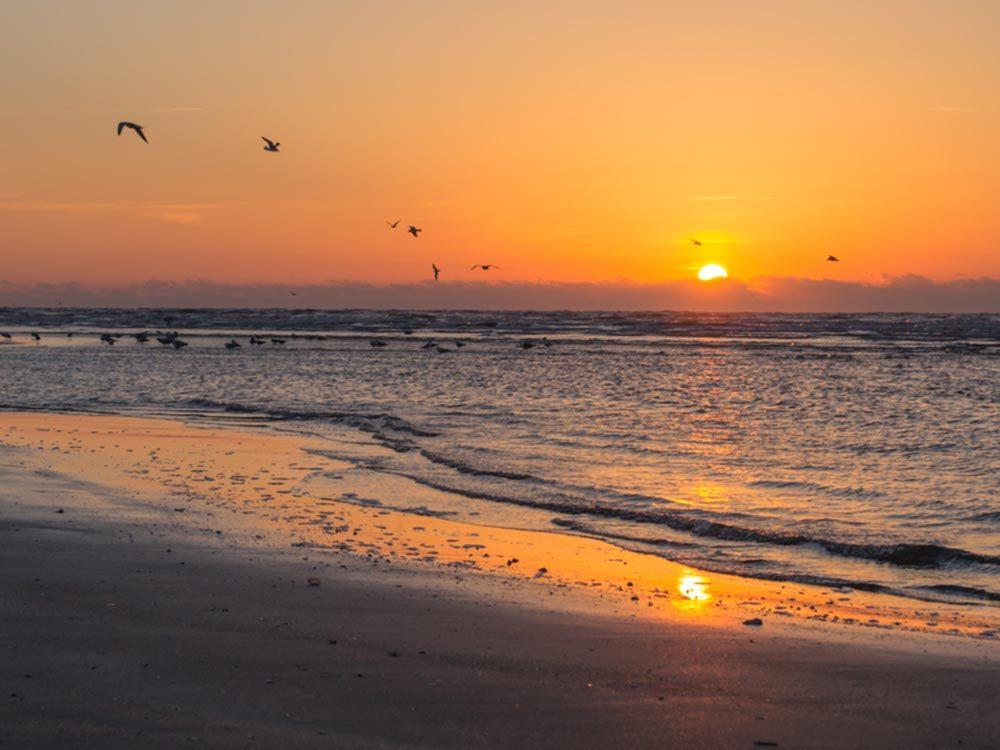 Profitez des plages de Caroline du Sud.