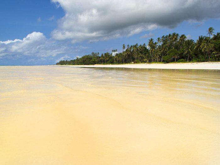Plus belle plage du monde: Diani Beach.
