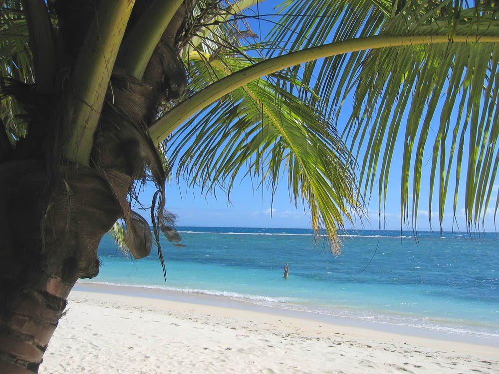 Plus belle plage du monde: Ile aux Nattes.