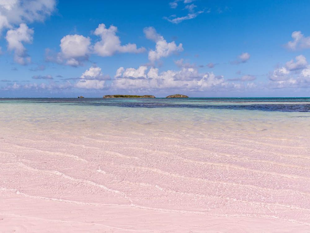 Plus belle plage du monde: Pink Sands Beach.