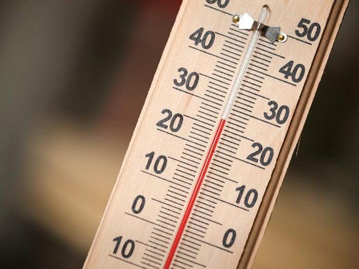 Tiques du Québec: leur nombre augmente avec la chaleur.