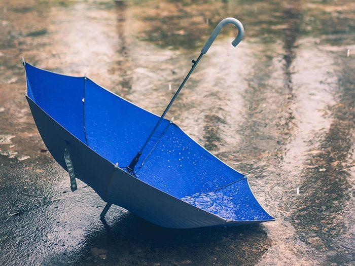 Avant cet automne, jetez vos vieux parasols et parapluies.
