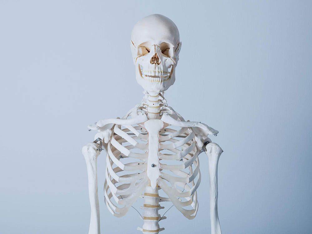 Le corps après la mort se dégrade au bout de quelques mois.