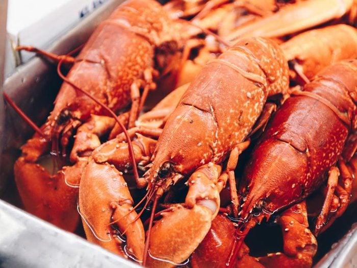 Fait insolite: Les homards goûtent avec leurs pattes.