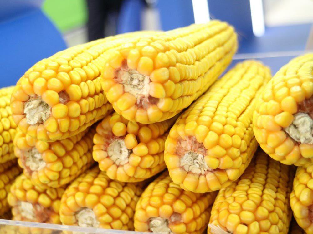 Fait insolite: les Américains utilisaient des épis de maïs comme papier hygiénique.