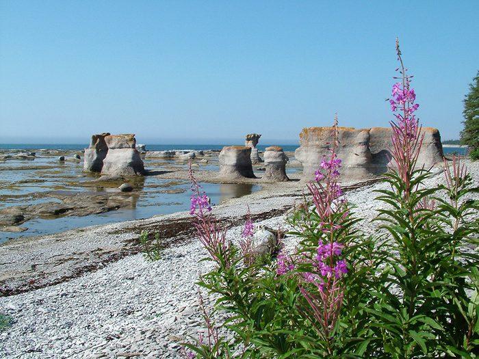 La plage de l'Anse aux Érosion dans l'archipel de Mingan fait partie des plus belles plages du Québec.