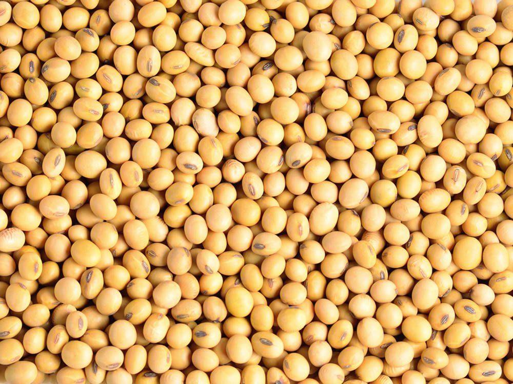 Aliment santé: mangez du soya en petite quantité seulement.
