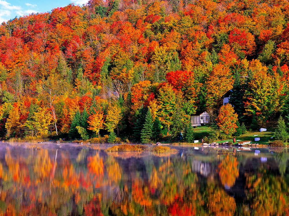 L'automne est définitivement la saison des couleurs.