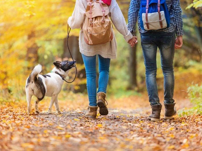 En automne, promenez-vous dans des parcs.
