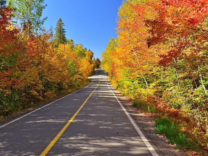 Célébrer l'équinoxe d'automne.
