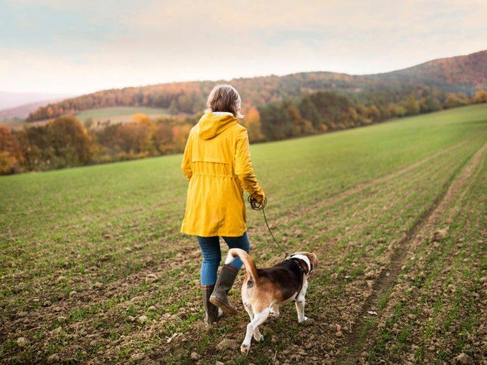 En automne, vous pouvez faire de longues marches sans transpirez.