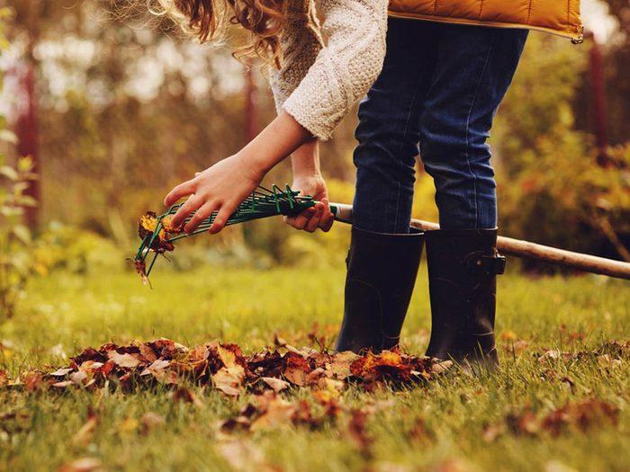 En automne, ce n'est plus la peine de tondre la pelouse.