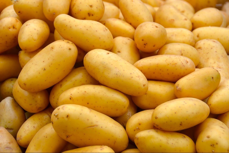 Les pommes de terre font parties des fruits et légumes d'automne.