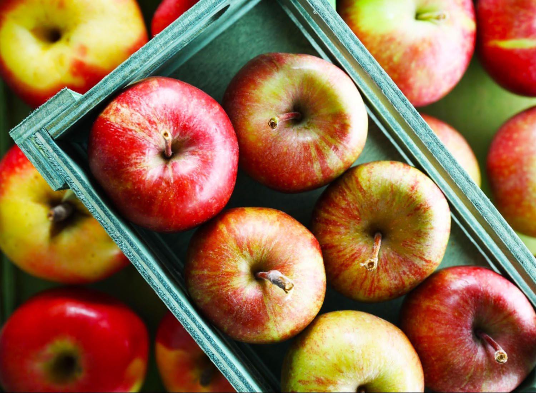 Les pommes font parties des fruits et légumes de saison.