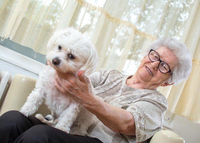 Demandez à vos grands-parents s'ils ont eu des animaux.