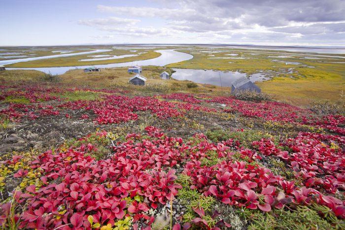Shishmaref fait partie des îles qui disparaîtront d'ici 80 ans.