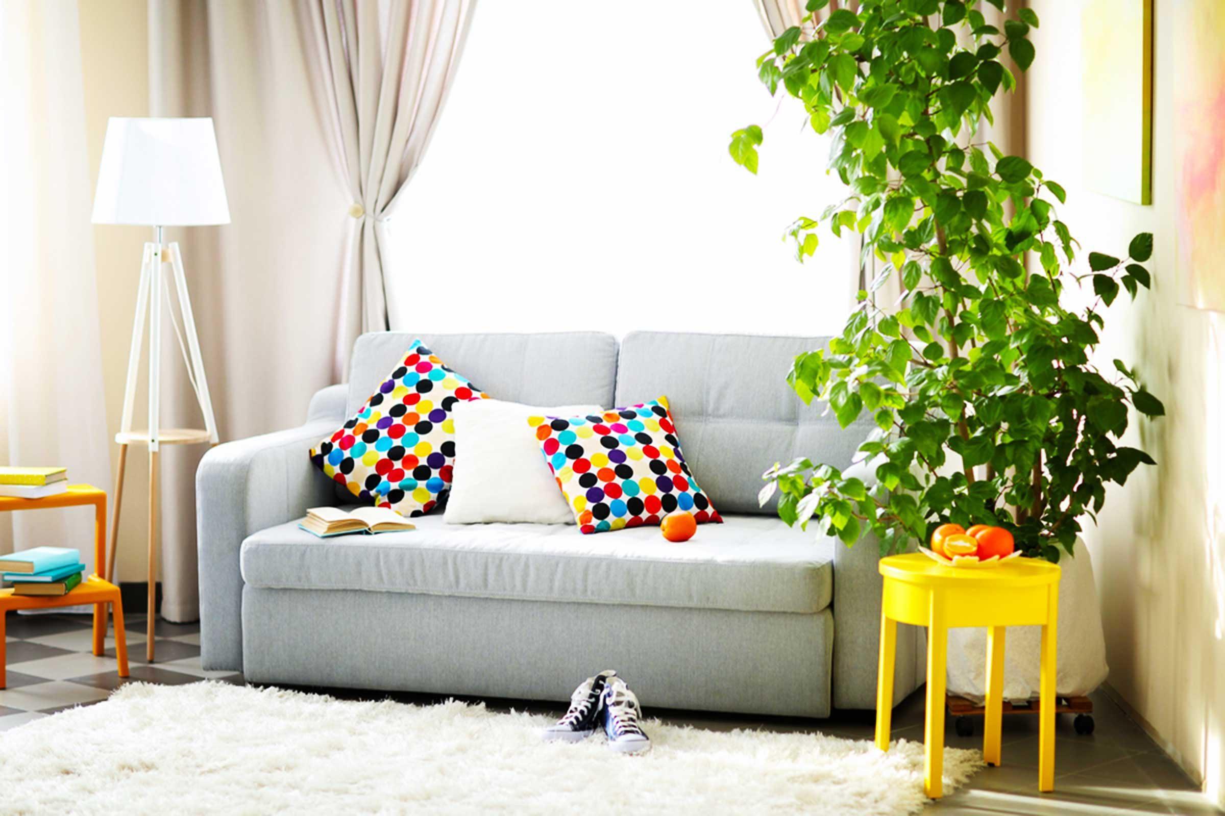 Donnez de la couleur à votre maison!