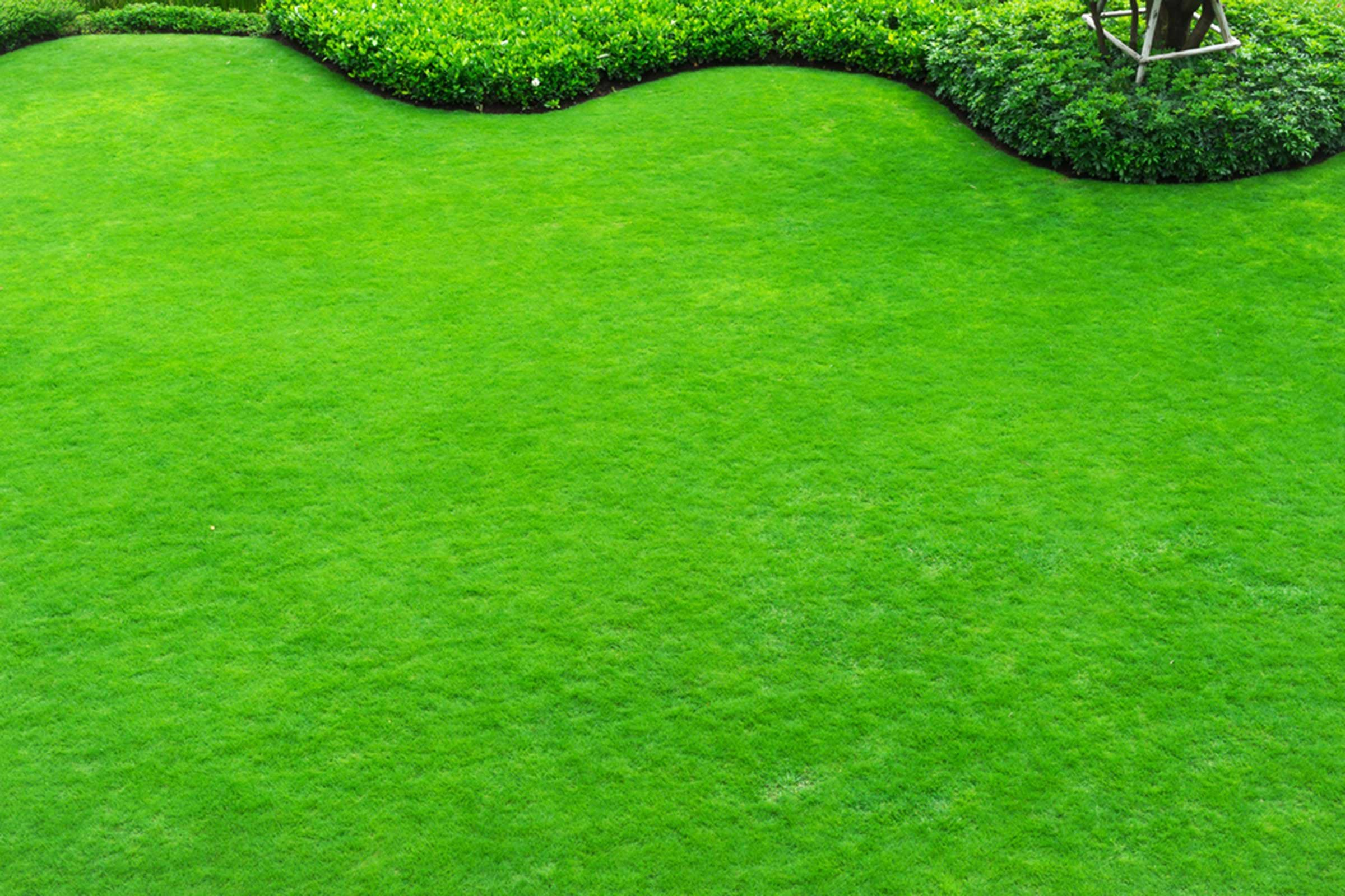 Donnez de la valeur à votre maison en améliorant l'aspect du jardin.