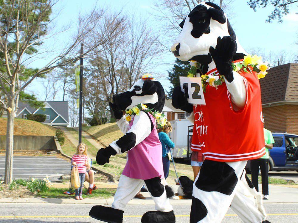 Le palmarès des objets volés les plus étranges comprend un déguisement de vache.