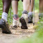 Voici pourquoi marcher est bon pour la santé