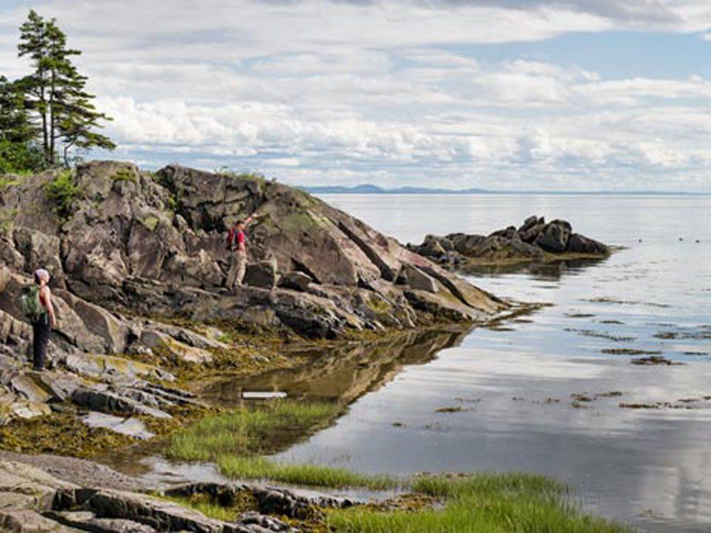 Profitez d'une randonnée pédestre à l'Île aux lièvres.