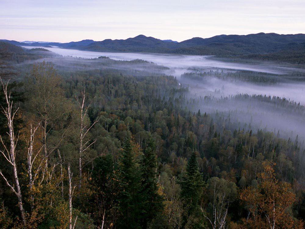 Profitez d'une randonnée pédestre au parc national des Monts-Valin.