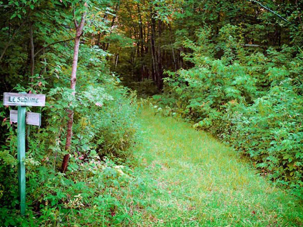 Profitez d'une randonnée pédestre au parc régional de la rivière Gentilly.