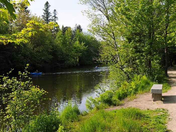 Profitez d'une randonnée pédestre au parc linéaire de la rivière Saint-Charles.