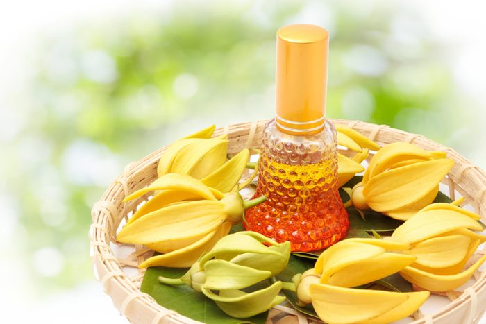 Huiles essentielles pour soulager les crampes menstruelles: ylang-ylang