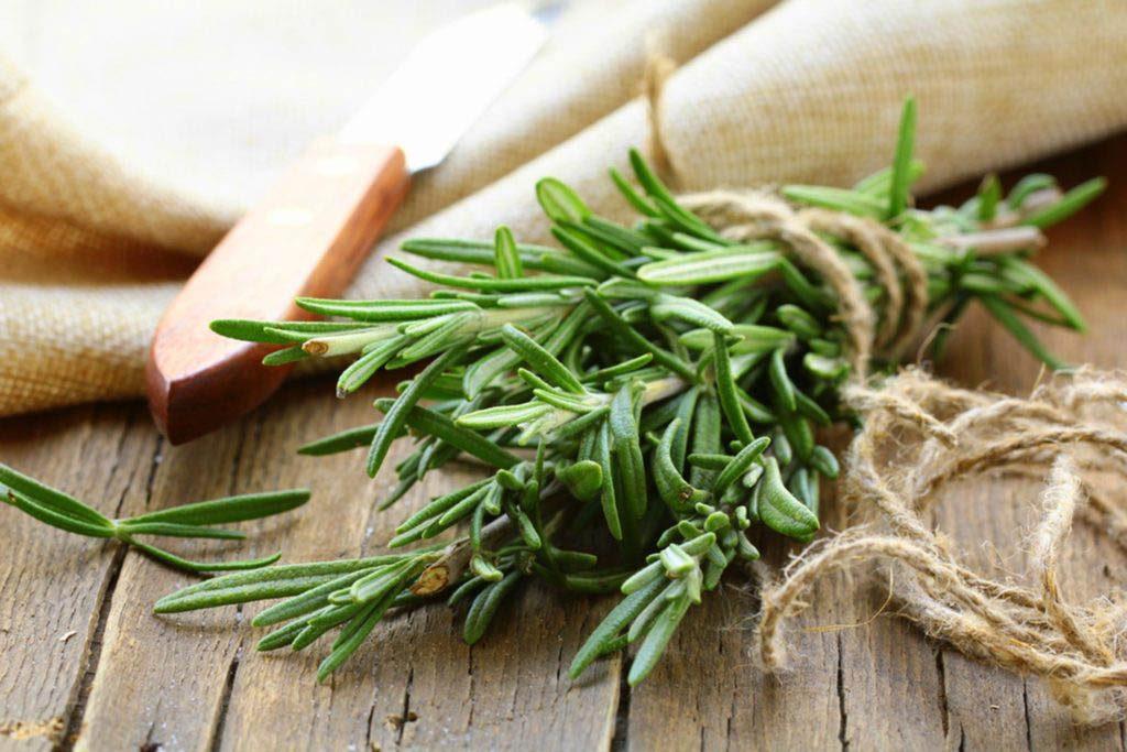 Alzheimer : faites pousser du romarin pour prévenir la maladie.
