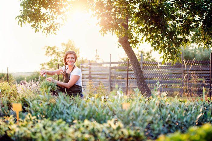 Alzheimer : le jardinage est une bonne activité pour lutter contre la maladie.